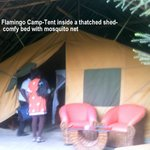Flamingo Camp:Comfy Tent within a Thatched hut.