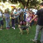 Doggy day at MWEDO!