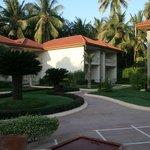 Jardín y zona habitaciones