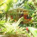 Hotel bungalows SolyLuna los Almendros. Foto