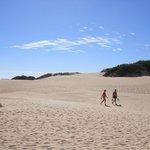 Dune di Corallejo