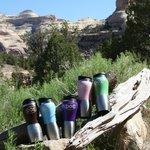 DOS to-go mugs on a river trip