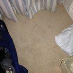 Zimmerteppich