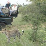 We had company viewing the leopard!