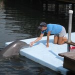 """""""Hey cutie .. .. and, the Dolphin too!"""""""