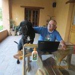 bruno, un amigo de la casa :)