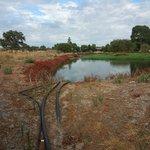 dam/sewage system