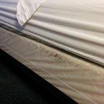 black markings along side of bed