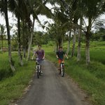 Riding through the rice fields