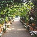 Beautiful archway