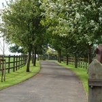 Driveway to Farm House