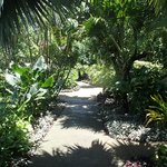 Path to our room.