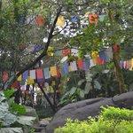 Norbulingka Institute of Tibetian Culture