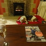 Hudson by the fire!