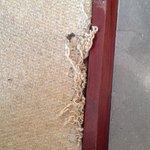 Carpet frays