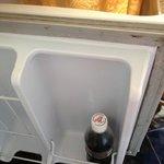 mould in fridge