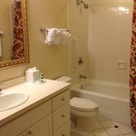 Guest Bathroom (attached to guest room)