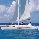 Shasa Catamaran Cruises