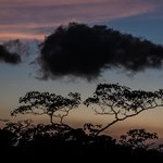 Sunset in the cloud forest canopy from our balcony