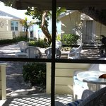 #8 Dolphin view out back sliding door.