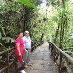 Los senderos que conducen a las Cataratas