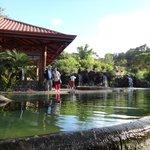 El Lago de Truchas