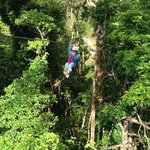 Canopy tour in the property!