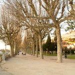 Parque do Mondego, em frente ao Hotel