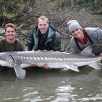 Fraser river sturgeon fishing