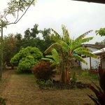 Summer Rapa Nui