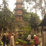 pilgrims circumambulate the great pagoda.. dec'14