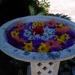 Blumenschmuck an der Rezetion