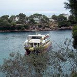 The Glass Bottomed Boat
