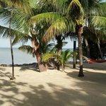 shade or sun the beach has both
