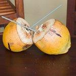 Королевские кокосы.