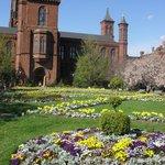 Edifício do Smithsonian Institution em Abril