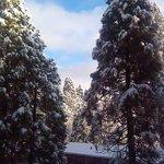 Finally Snow 1.31.14