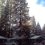 New Snow on Jan 31 2014