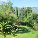 Garten mit Aussichtsplatz
