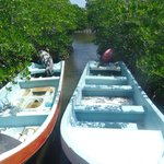 Punta Allen - transportation for our tour of Sian Ka'an