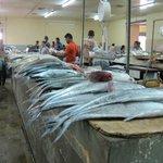 Fish at the Tunapuna Market