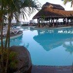 Early morning pool scene
