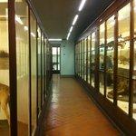 La Specola a Firenze, una sala