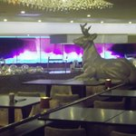 Carvery in 'Grove Restaurant @ Alvaston Hall Hotel (January 2014)