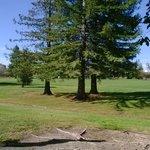 doubletree rohnert park