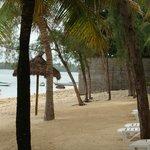 plage vue de broite