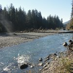 Hoh River, along the Hoh River Trail