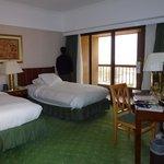 standard room nile view
