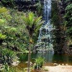Waitakere Falls