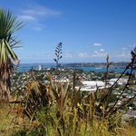 Looking over Auckland Harbour from Mount Victoria